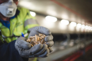Compressed wood pellets [Image courtesy Drax Power]